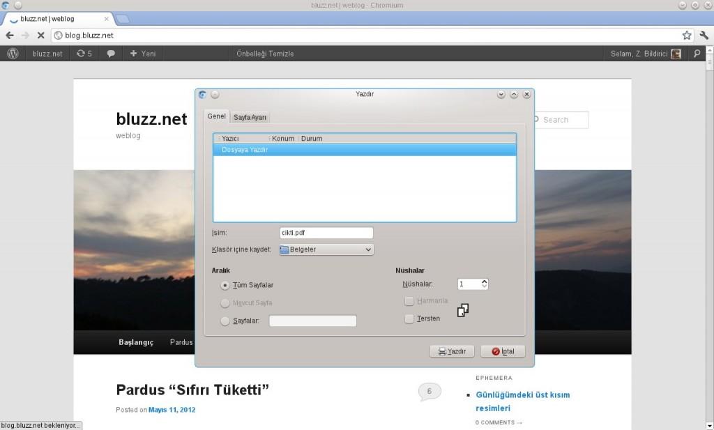 Chromium- GNU/Linux Sürümü- Dosyaya Yazdır, PDF ve PostScript biçiminde çıktı alabilirsiniz
