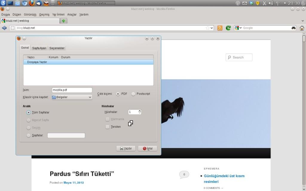 Firefox- GNU/Linux Sürümü- Dosyaya Yazdır, PDF ve PostScript biçiminde çıktı alabilirsiniz