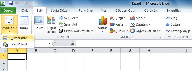 Microsoft Office 2010'daki çevrilmemiş alanlar: PivotTable(Özet Tablo) PivotChart(Özet Tablo Çizelgesi)