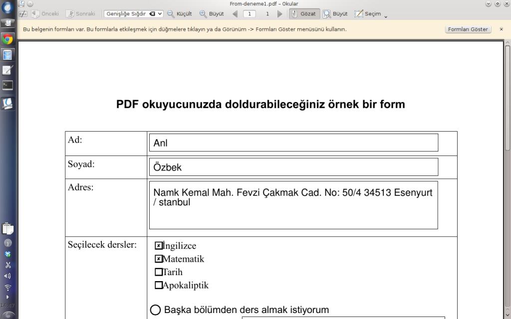 Okularda doldurulmuş PDF formu